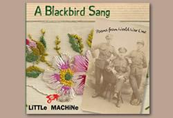 A Blackbird Sang